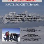 III Affich Karaté Ski 2015 PHOTO