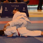 Bunkai Perrine en action