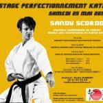 3 stages a ne pas manquer : Stage katas avec Sandy SCORDO le 25 mai à SEYNOD et 2 stages Départementaux